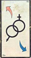 carte 15 Les Symboles Sexuels