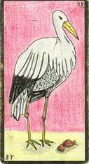 carte 18 La Cigogne