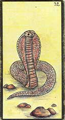 carte 32 Le Serpent