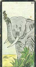 carte 38 L'Eléphant