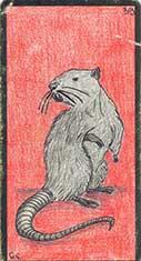 carte 39 Le Rat