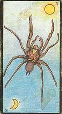 carte 8 l'araignée