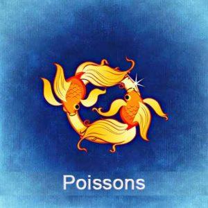 Rituel d'aimantation signe des Poissons